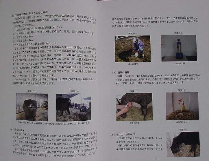 manual3rdedition2の画像